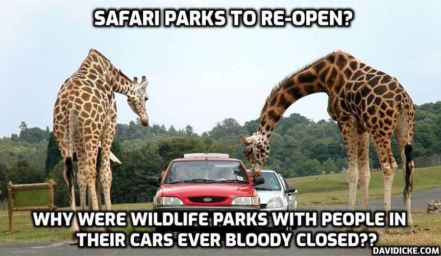 Zoos, safari parks and drive-in cinemas among English businesses reopening on Monday after insane and disastrous lockdown