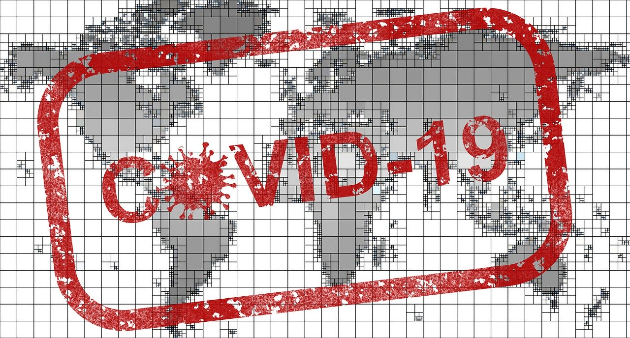 Flawed COVID-19 Data, Lockdown and Its Global Impacts