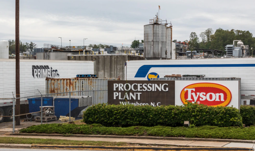 """Tyson Foods Employs COVID-19 """"Tracking Algorithms"""" At Meatpacking Plants"""