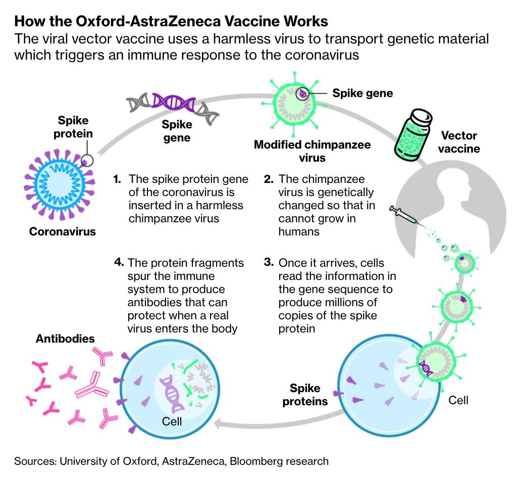 CDC Asks Americans Not To Travel For Thanksgiving; AstraZeneca Vaccine Elicits Promising Results: Live Updates