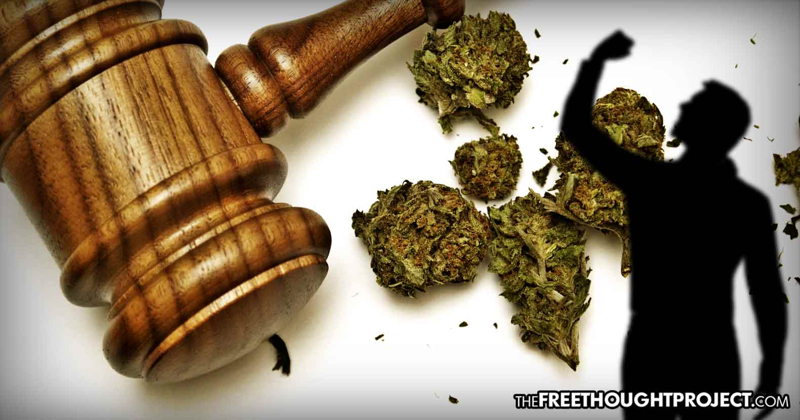 After Legalizing Cannabis, Arizona Begins Dismissing Weed Charges Immediately