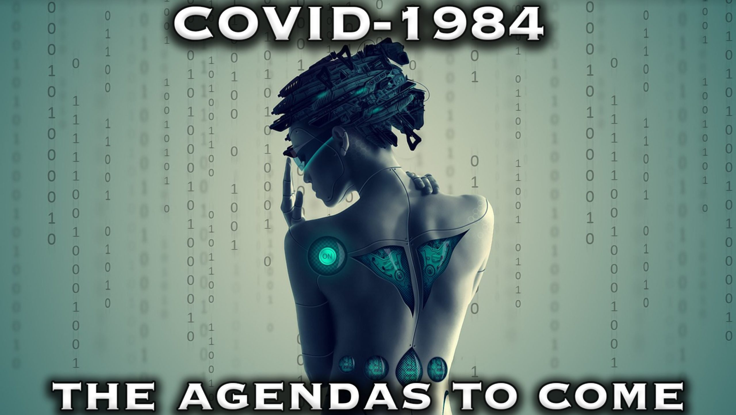 Covid-1984 And The Agendas To Come with James Perloff