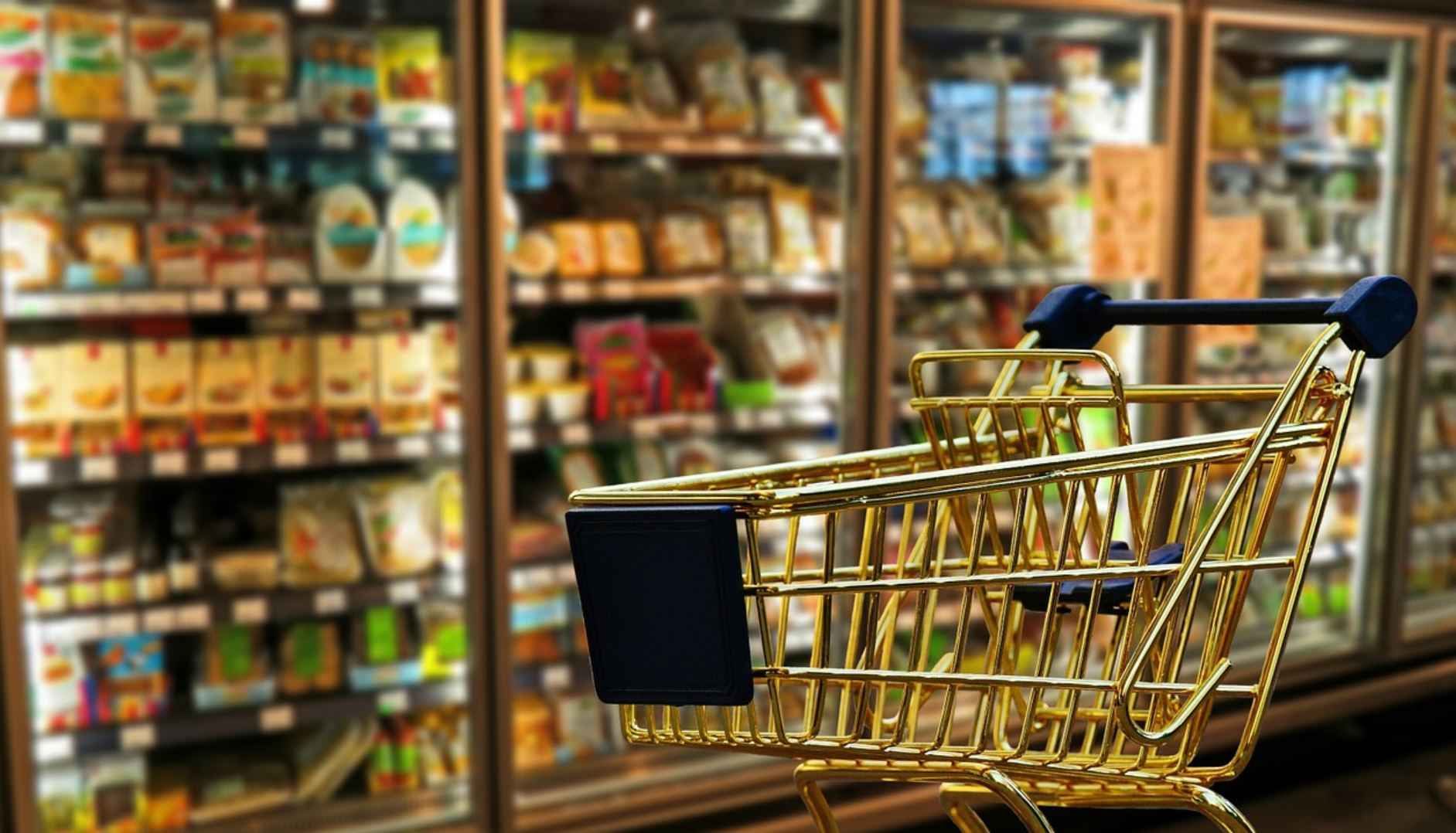 An Ominous Sign: Americans Have Begun Stealing Food to Survive