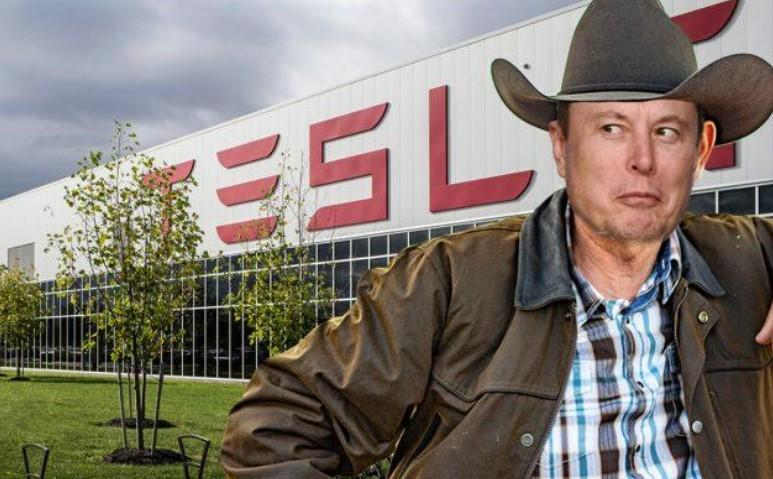 Elon Musk Says He Has Officially Moved To Texas