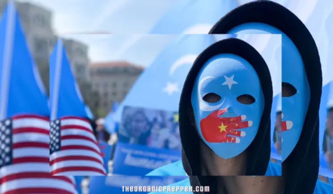 Does the West Actually Care About the Uighur Genocide in China or Is It a Handy Excuse for Conflict?