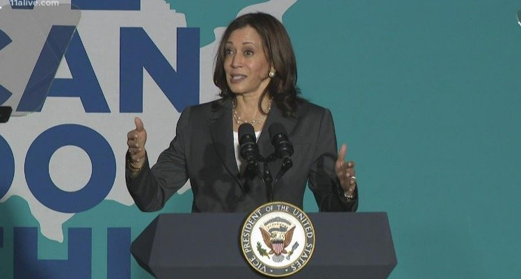 Kamala Harris Tells Activists to Knock on Doors and Harass People Who Haven't Been Vaccinated in Desperate Push to Meet 4th of July Goal (VIDEO)
